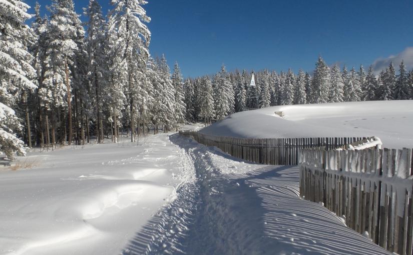 Der 3-Seen-Blick Weg in Mariazell – eine Winterwanderung für aktiveGenießer