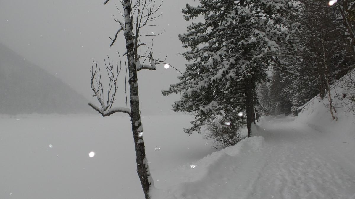 Tiefster Winter - Spaziergang am Erlaufsee