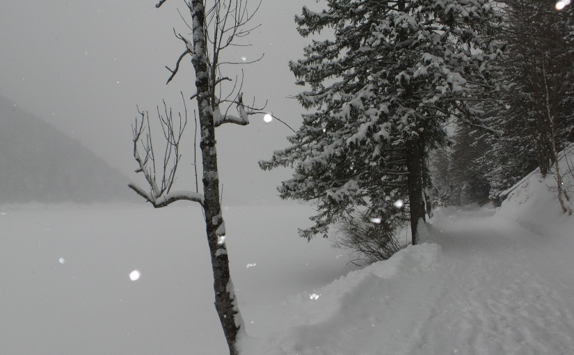 Tiefster Winter – Spaziergang amErlaufsee