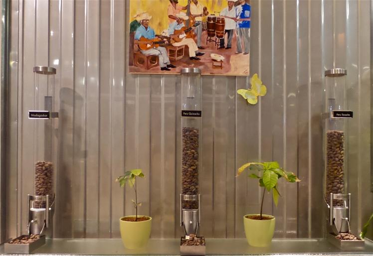 Kakaobohnen zotter