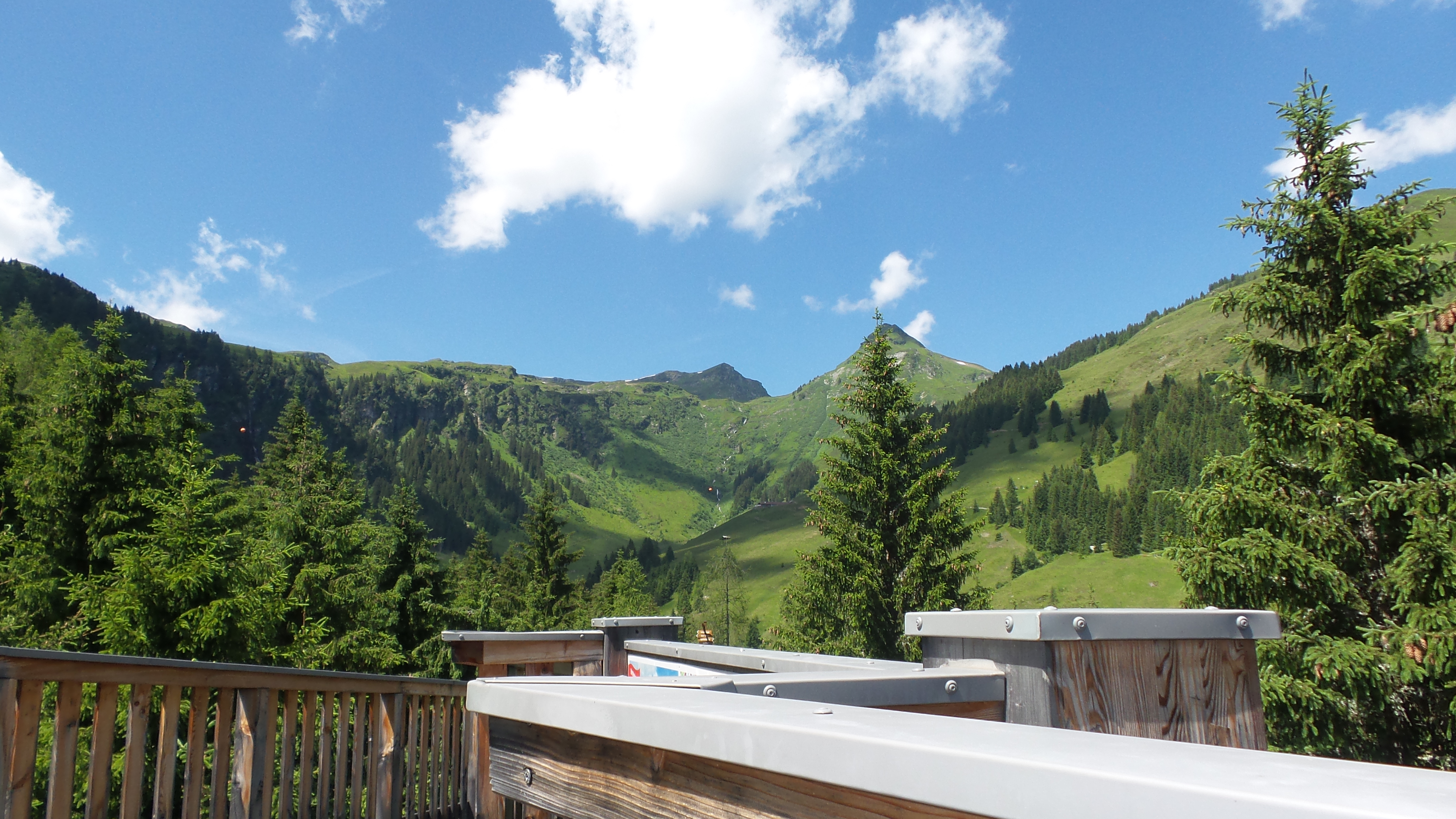 Baumzipfelweg Saalbach Hinterglemm