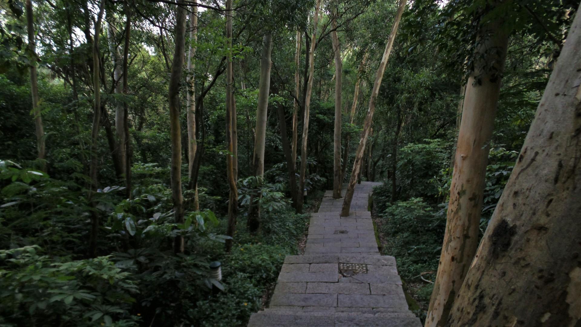 Danan Moutain, Nanshan Park - Wanderung