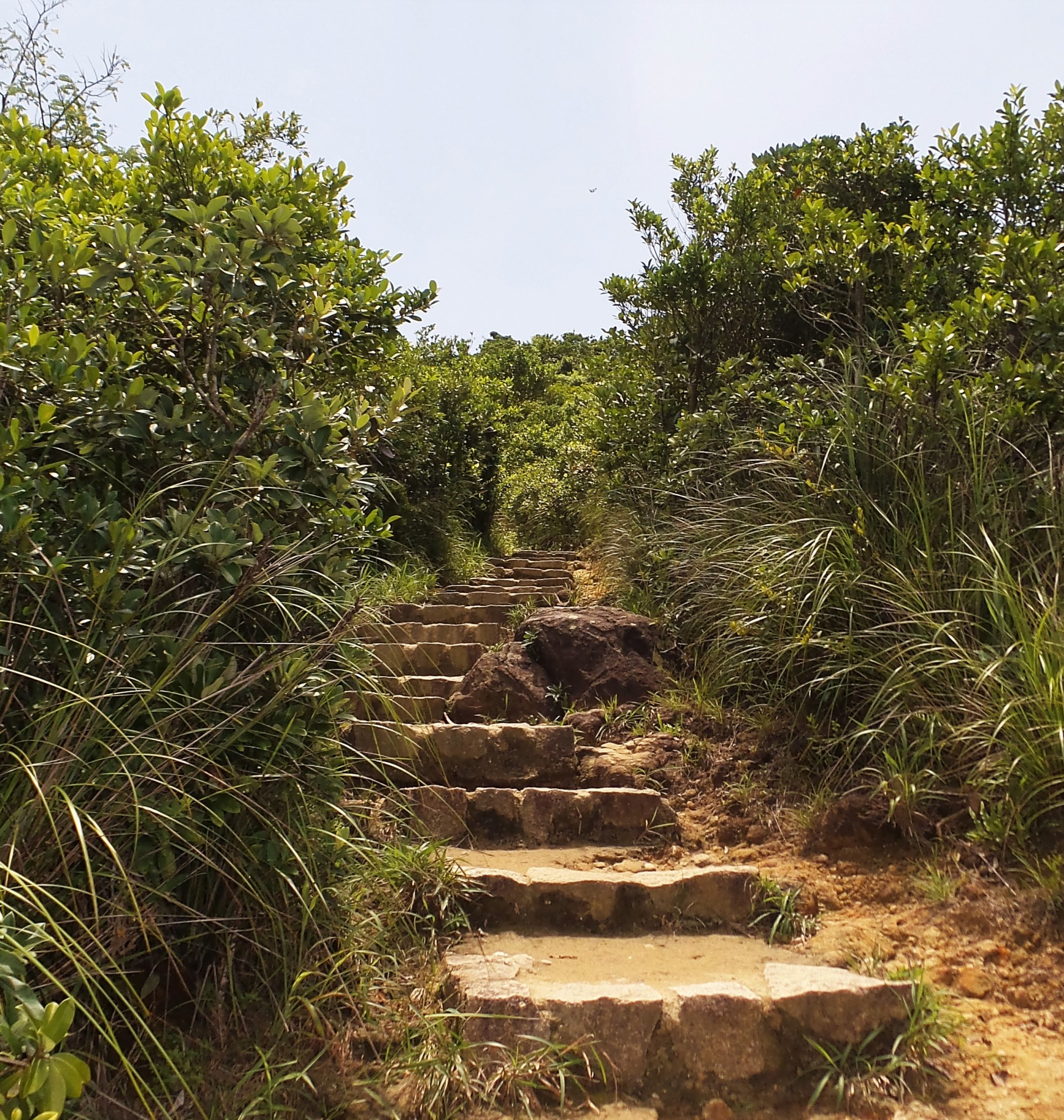 Dragon's Back Trail Wanderung Hong Kong