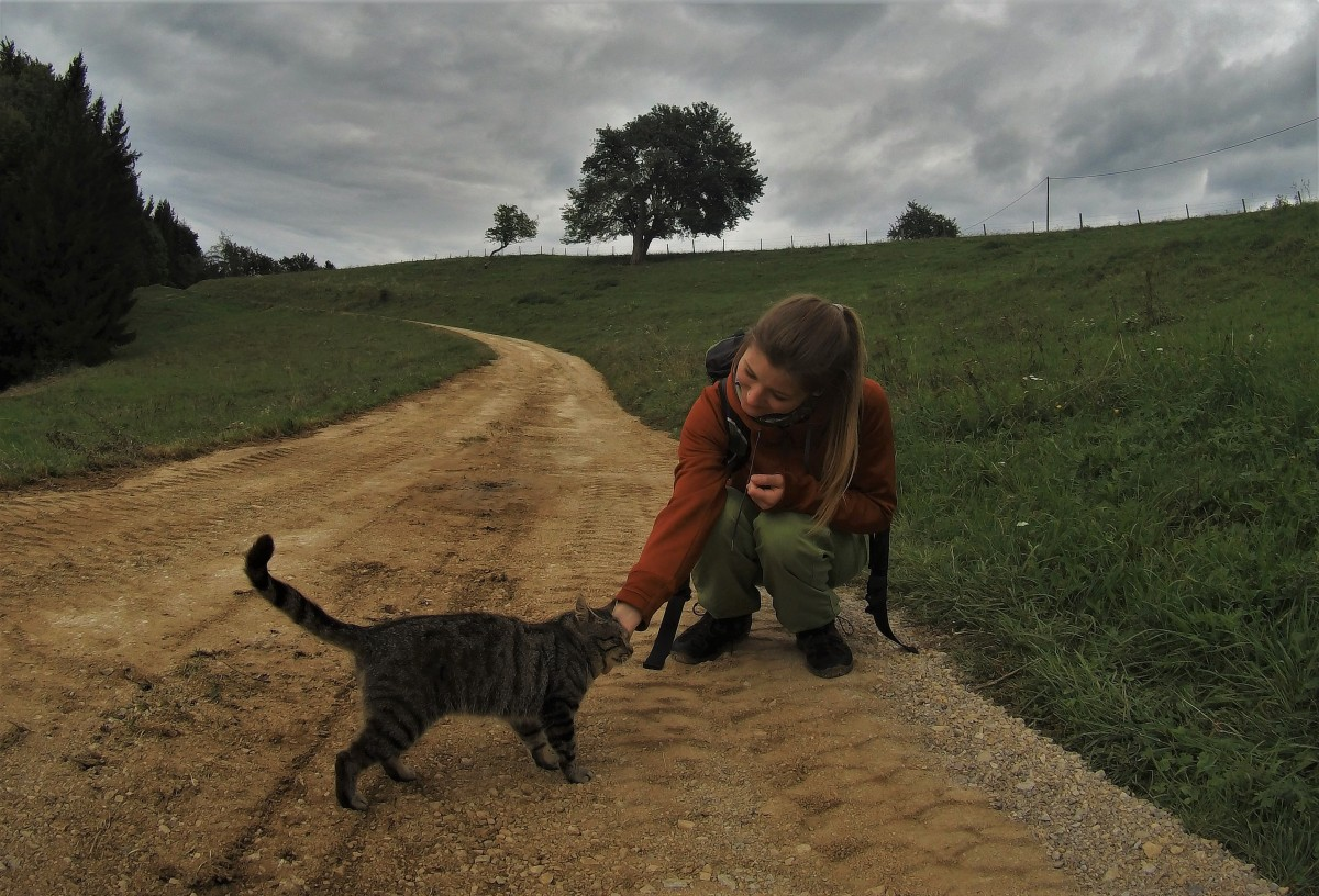 Die kleinen Dinge am Wegesrand - mit offenen Augen durch die Welt