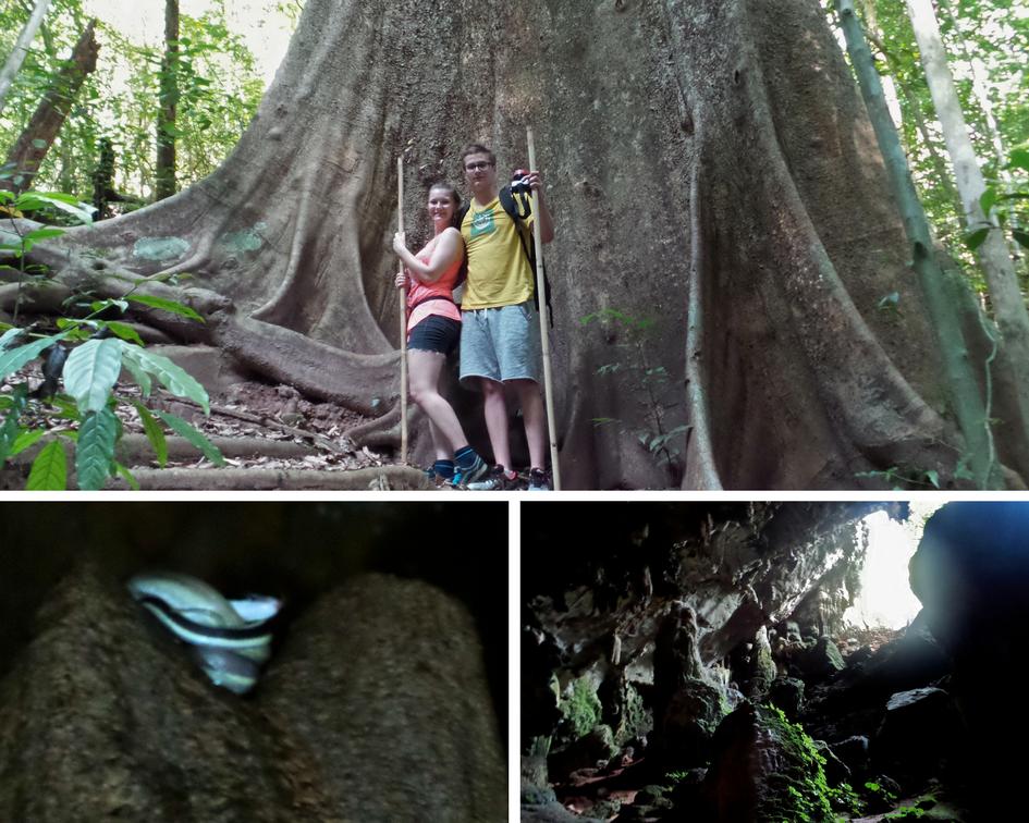 Wandern im Khao Sok Nationalpark
