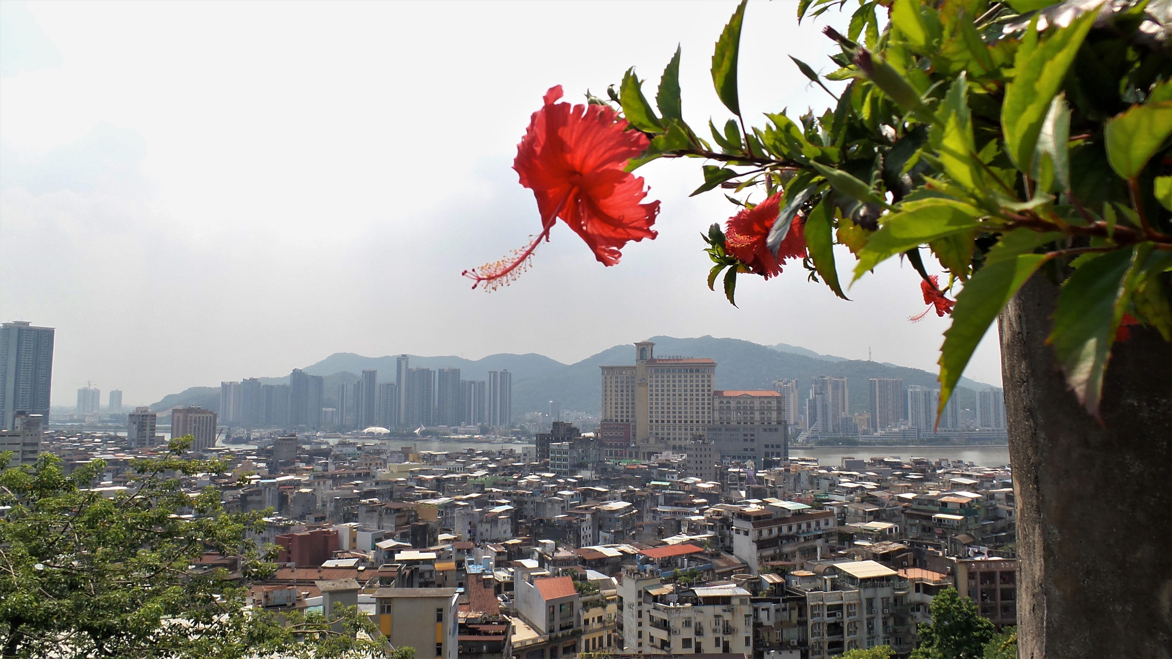 Stadtbild Foto - Macao