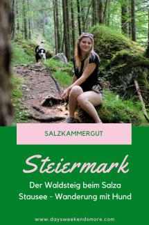 Der Waldsteig beim Salza Stausee in Bad Mitterndorf im Salzkammergut. Wanderung mit dem Hund.