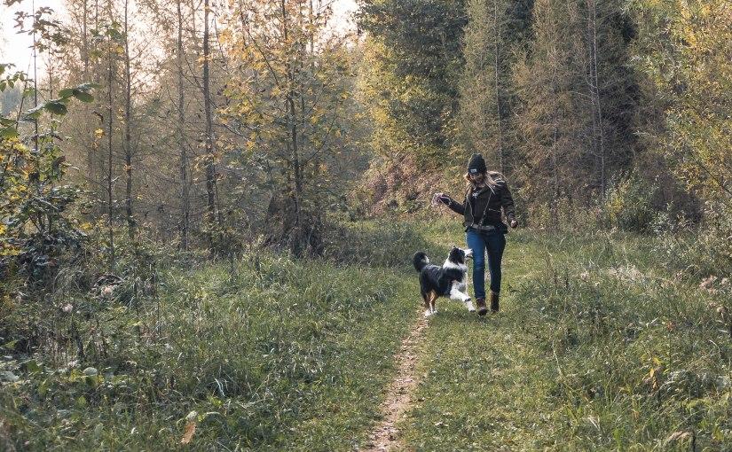Vor der Haustüre: Schnelle Waldrunde in Gratwein (mitHund)