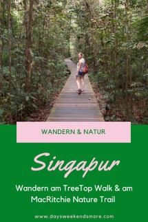 Wandern in Singapur - am TreeTop Walk und am MacRitchie Nature Trail. Ein TOP Highlight! (2)