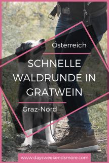 Kleiner Spaziergang rund um den Spechtensee in der Obersteiermark. Perfekt für einen kurzen Familienausflug. (1)