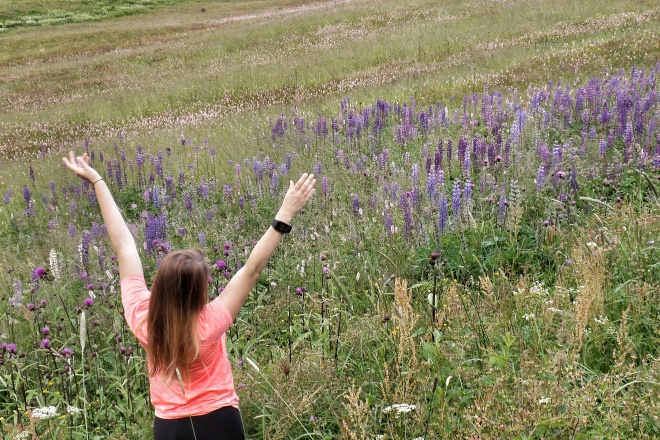Sommerurlaub in Oberwiesenthal