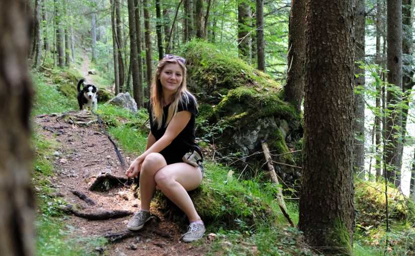 Der Waldsteig – Schattige Wanderung beim Salza Stausee in Bad Mitterndorf (mitHund)