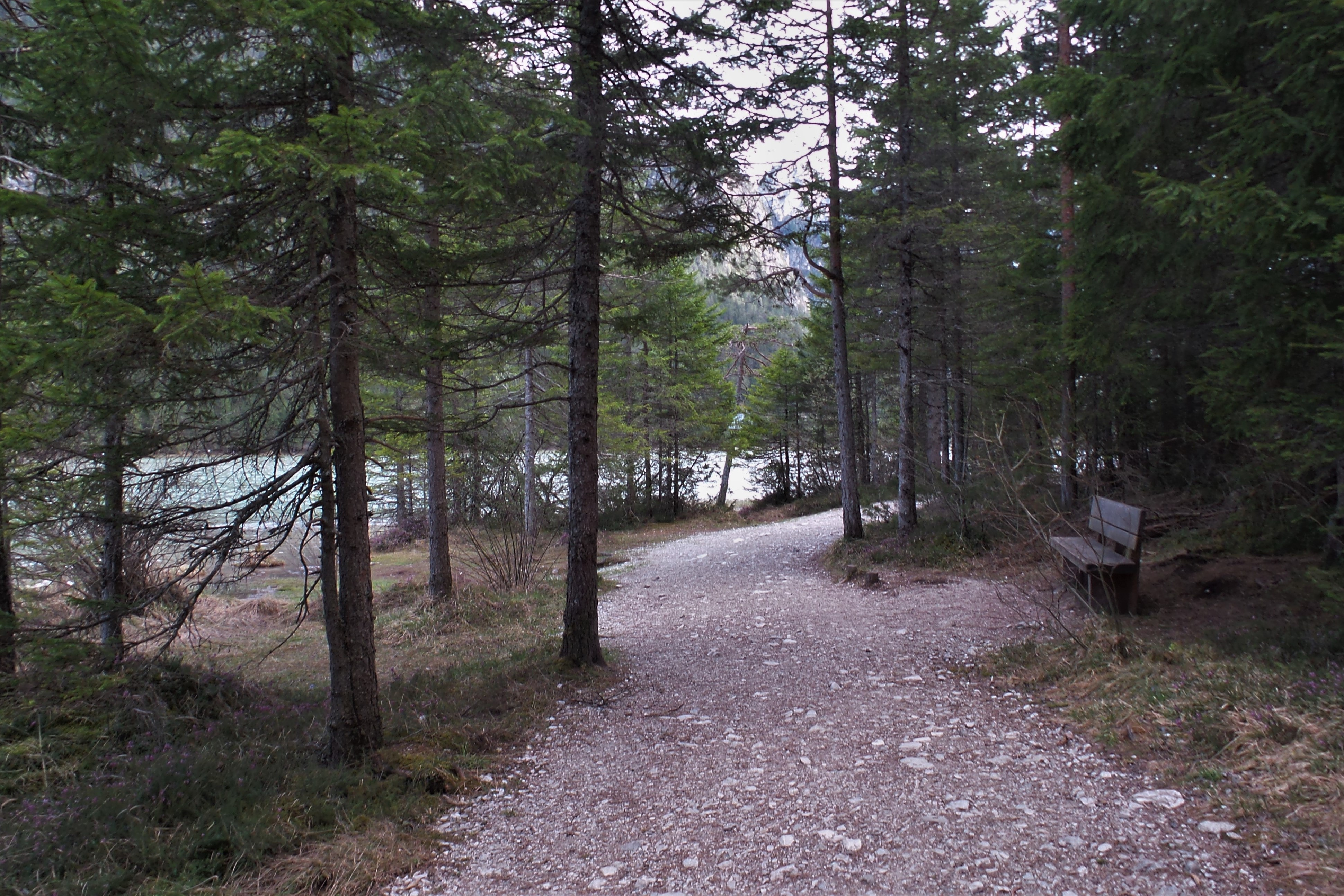 Spaziergang am Toblacher See