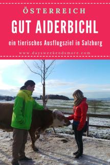 Gut Aiderbichl - Ein tierisches Ausflugsziel in Salzburg