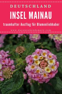 Insel Mainau - toller Ausflugstipp für Blumen - und Gartenliebhaber