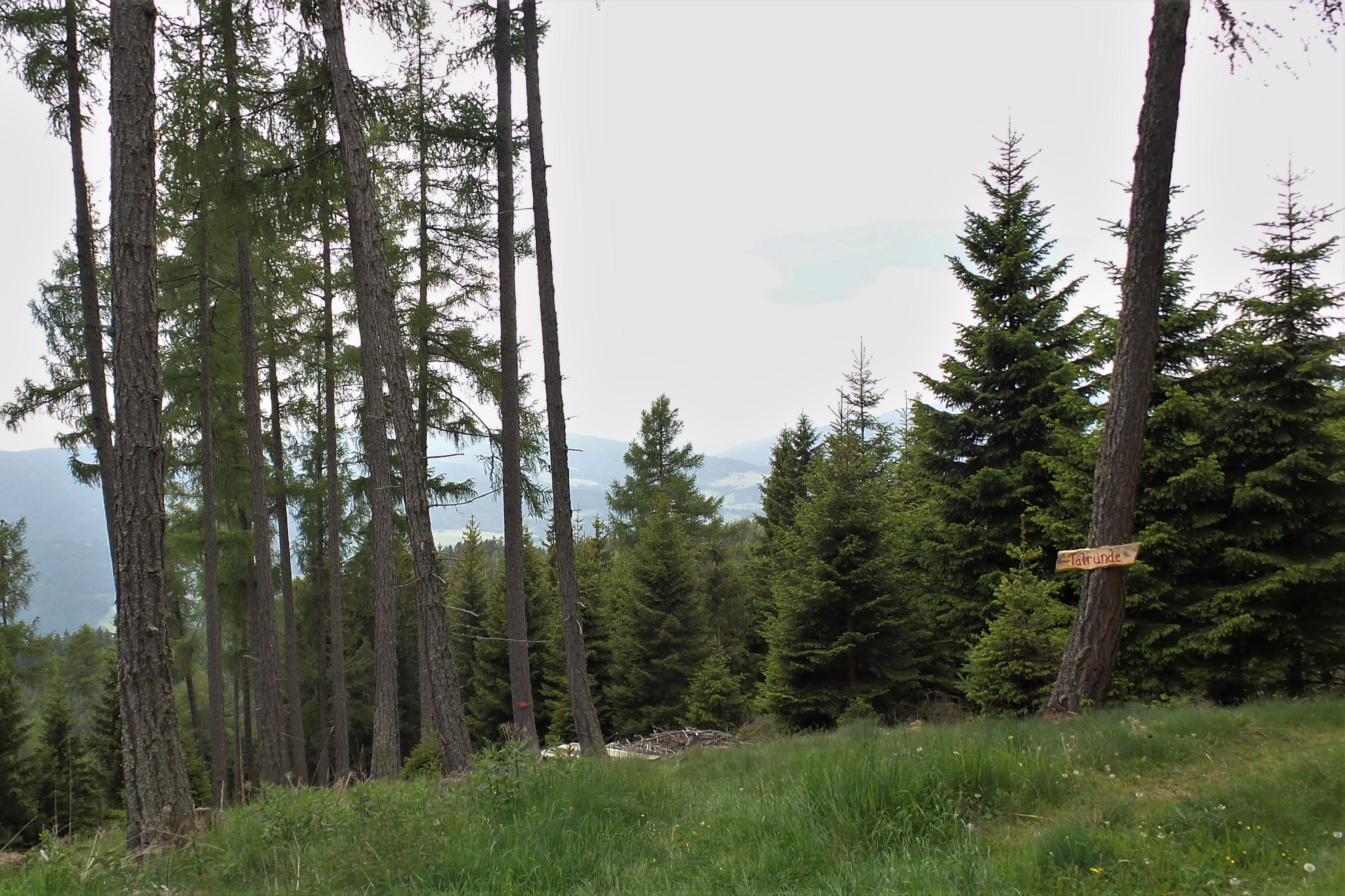 Bogenschießen im Naturpark Zirbitzkogel-Grebenzen