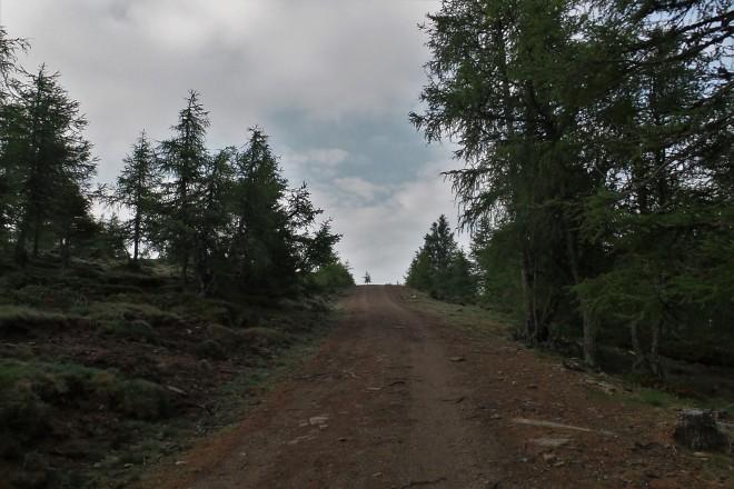 Panoramarunde Zirbitz