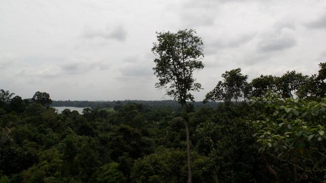 Ausblick auf das Naturschutzgebiet