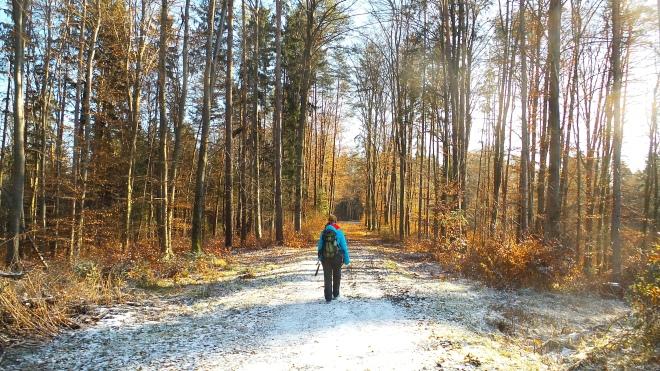 Wandern am GUW