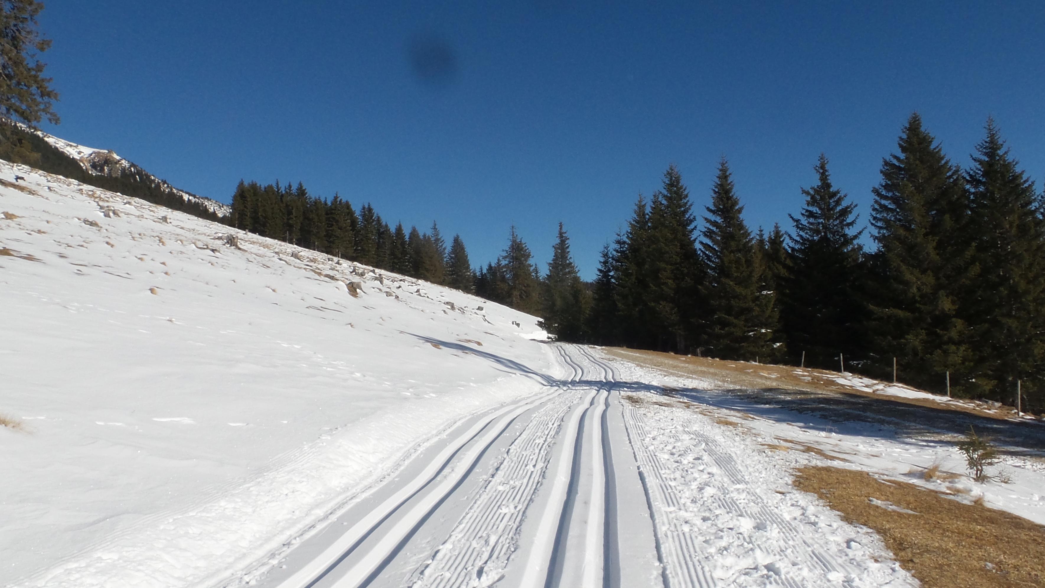 Langlaufen Salzstiegl