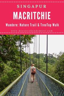 Wandern in Singapur - am TreeTop Walk und am MacRitchie Nature Trail. Ein TOP Highlight! (1)