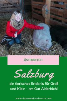 Gut Aiderbichl in Salzburg - ein tierisches Erlebnis für Groß und Klein