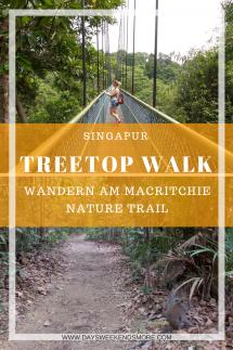 Wandern in Singapur - am TreeTop Walk und am MacRitchie Nature Trail. Ein TOP Highlight!