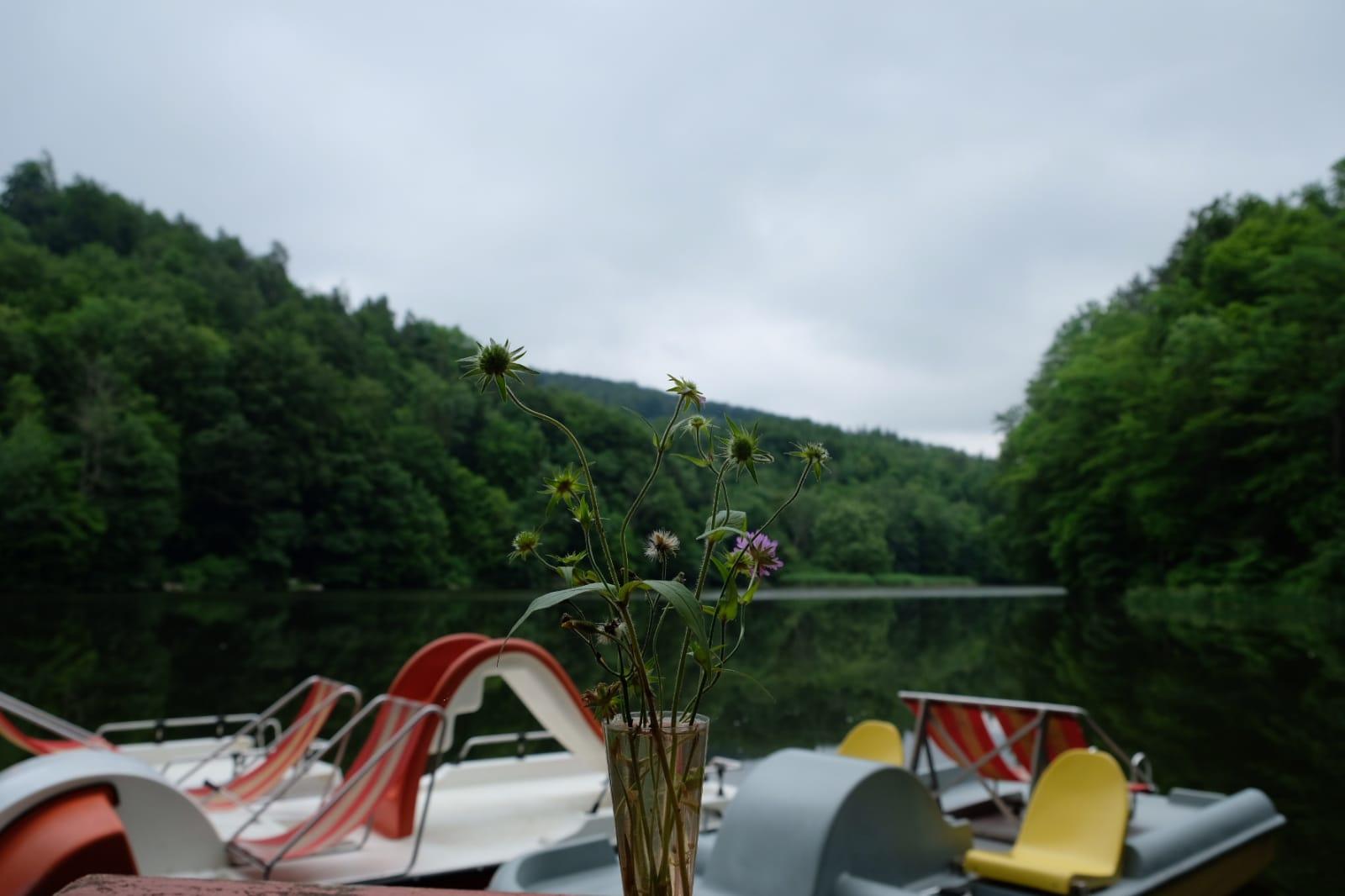 Ausflug zum Thalersee