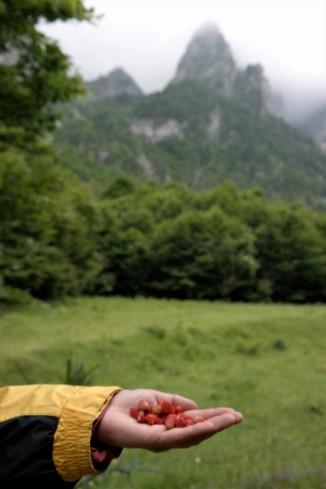 Prokletije Nationalpark Montenegro