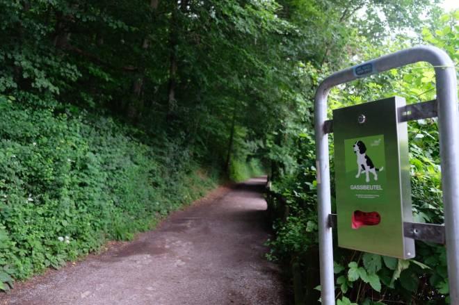 Thalersee Ausflug mit Hund