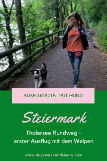 Der Thalersee Rundeweg in Thal bei Graz. Ein tolles Ausflugsziel in der Steiermark mit Hund und Welpen.