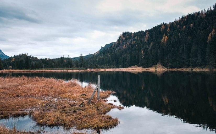 Spaziergang rund um den Spechtensee – Mystischer Herbst im Ennstal (mitHund)