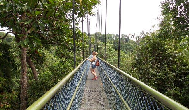 TreeTop Walk Singapur