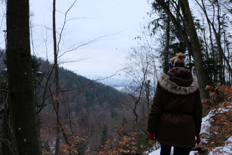 Ulrichsbergrunde in Rein