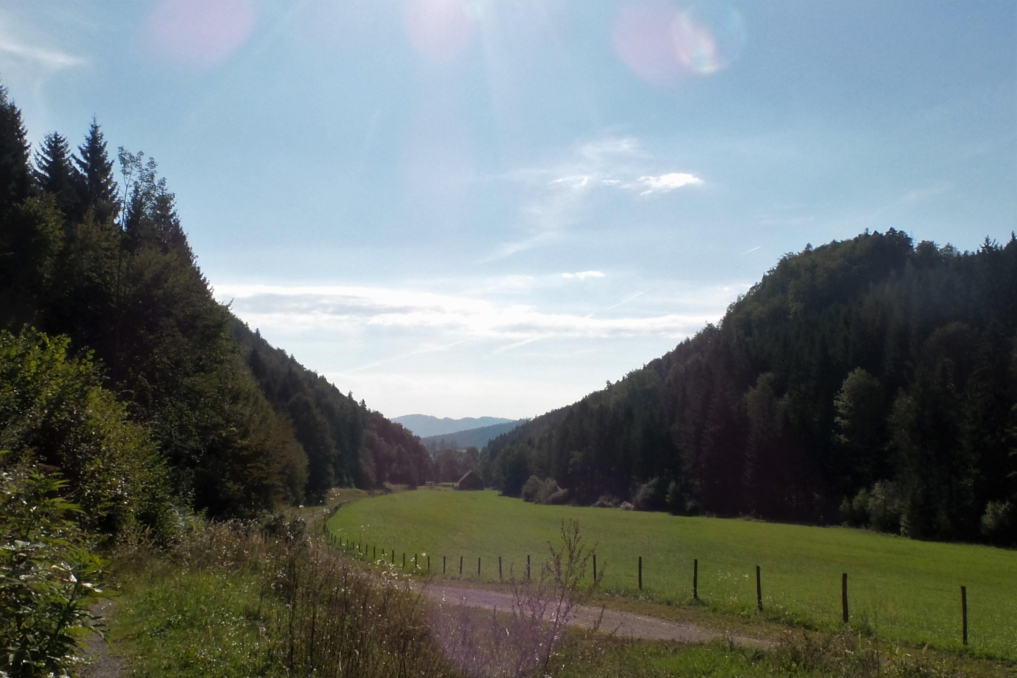 Prälatenweg - Kombitour in Rein