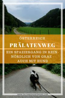 Der Prälatenweg in Rein - ein schattiger Spaziergang nördlich von Graz. Auch mit Welpen und dem Kinderwagen geeignet.