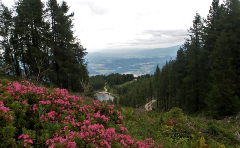 Sturm & Kälte am Siebenhüttenweg auf der Petzen inSüdkärnten