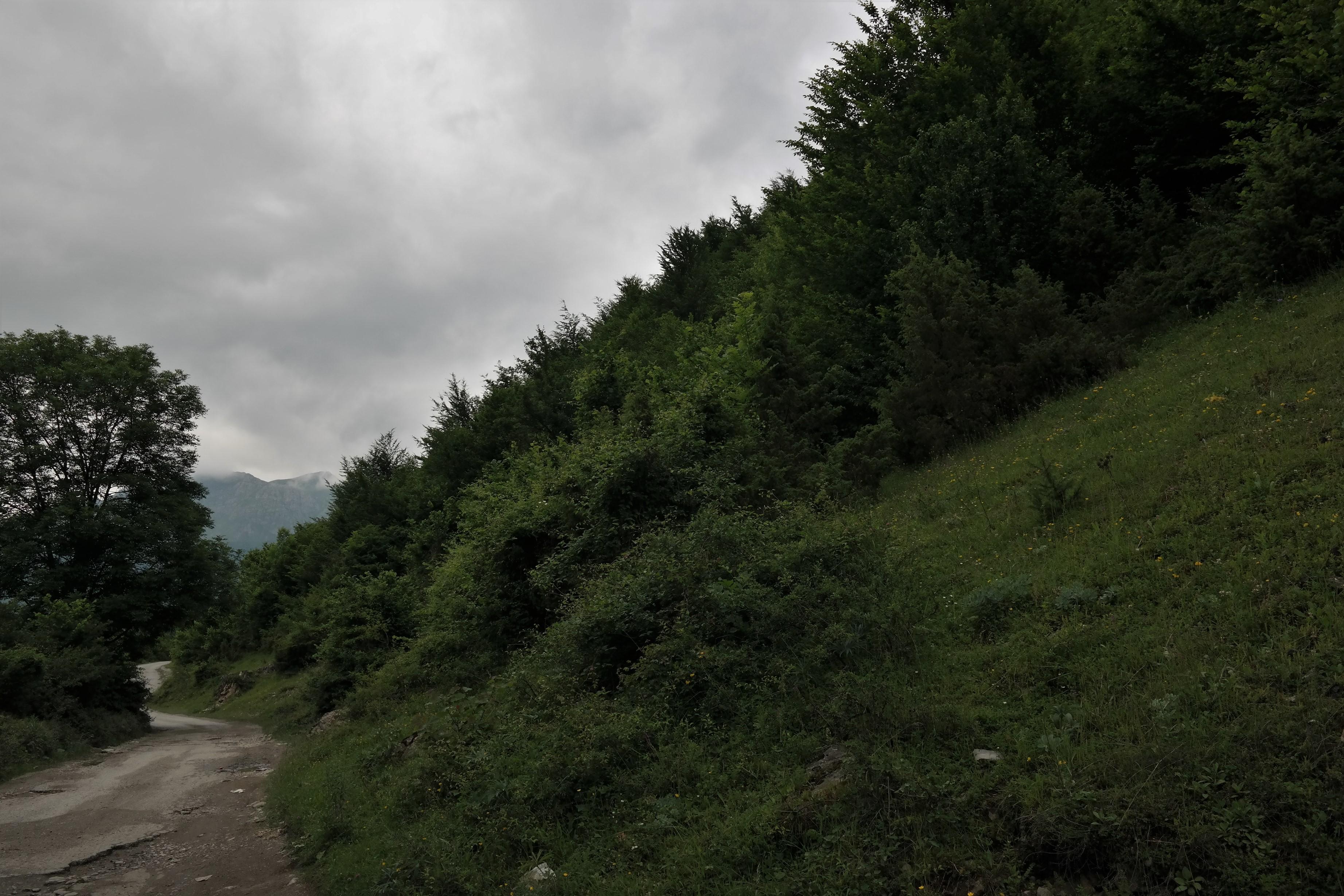Ropojana Tal Prokletije Nationalpark