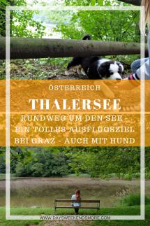 Der Thalersee Rundeweg in Thal bei Graz. Ein tolles Ausflugsziel in der Steiermark, auch mit Hund und Welpen.