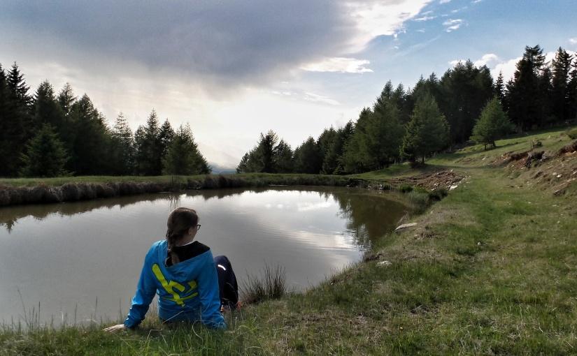 3D Bogenschießen mit der Familie – Ein Wochenende im Naturpark Zirbitzkogel-Grebenzen