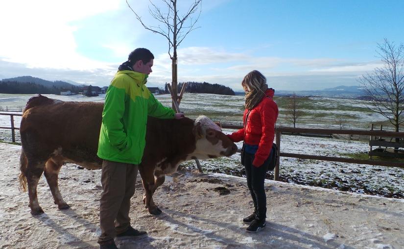 Gut Aiderbichl in Salzburg – ein tierisches Erlebnis für Groß undKlein